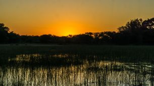 The sunsets of Maun