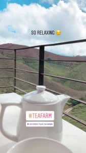 Tea Farm
